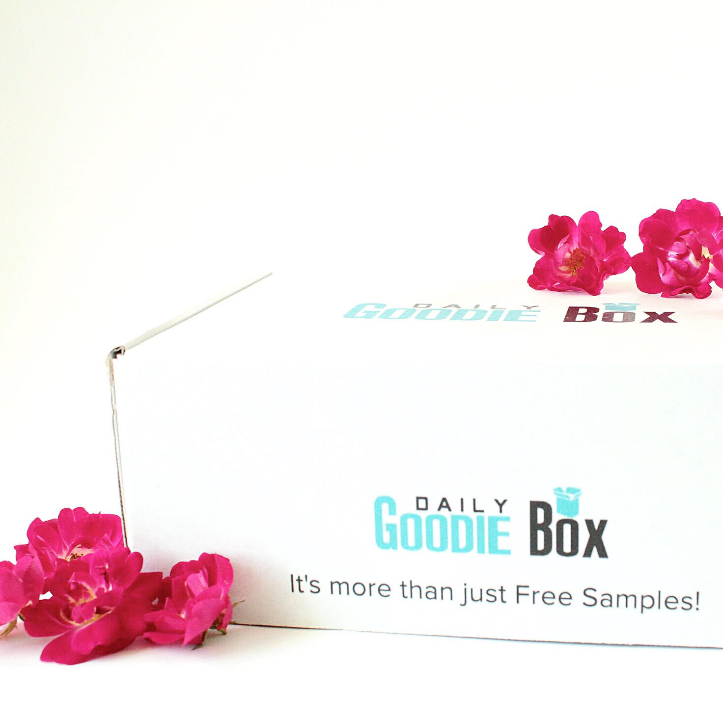 Free Products for Bloggers & Reviewers Series: Daily Goodie Box! graphic